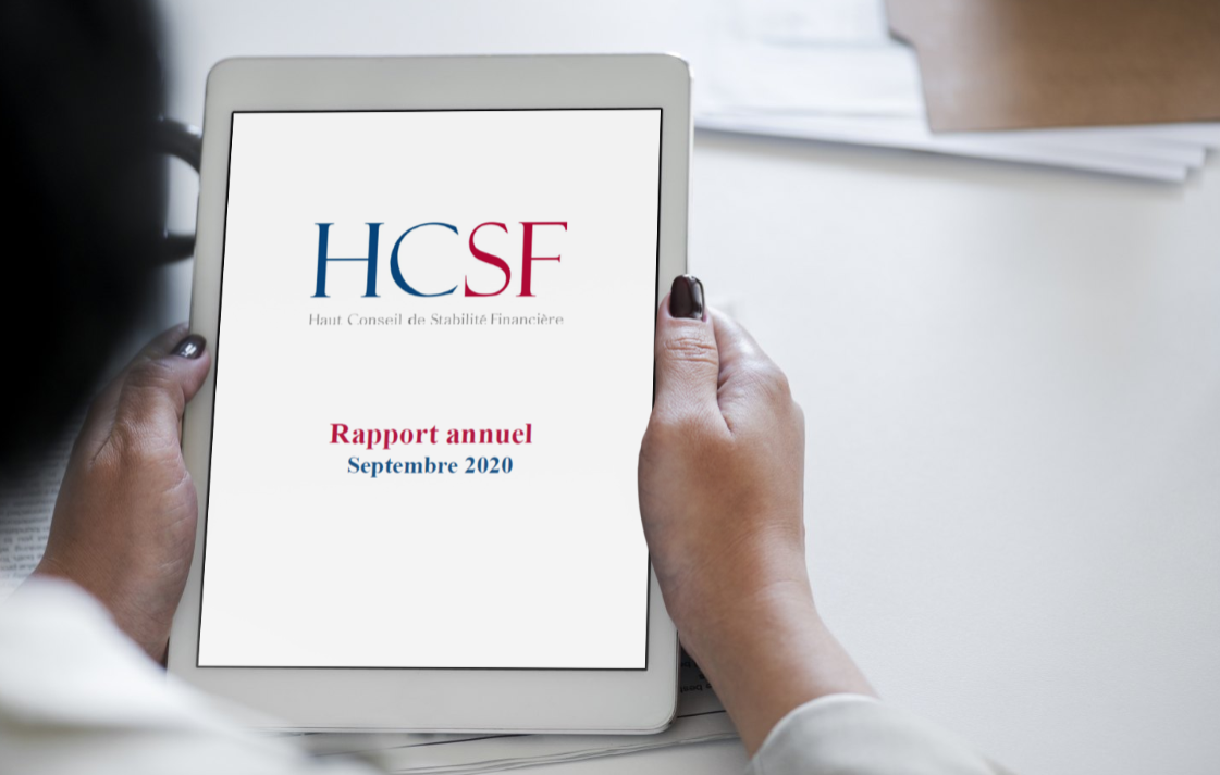 rapport annuel HCSF